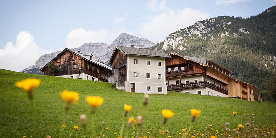 MANEMO Alpensalon Header