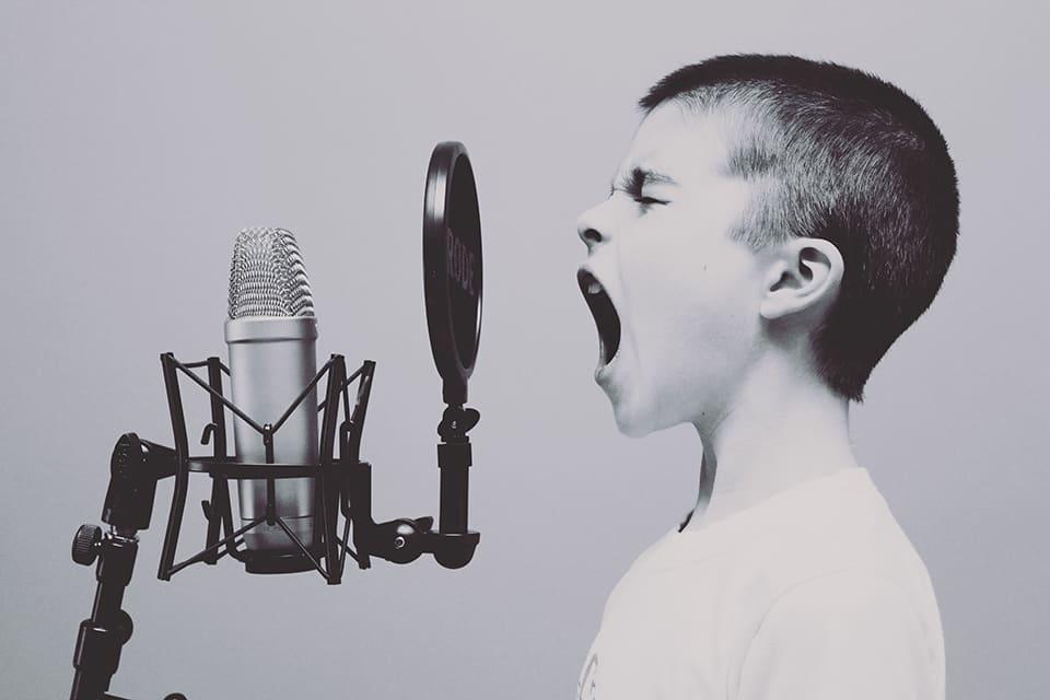 MANEMO Akademie für nachhaltige Entwicklung von Mensch und Oekonomie München Seminar 2020 Die verborgene Macht deiner Stimme professionelles Sprechtraining mit tba